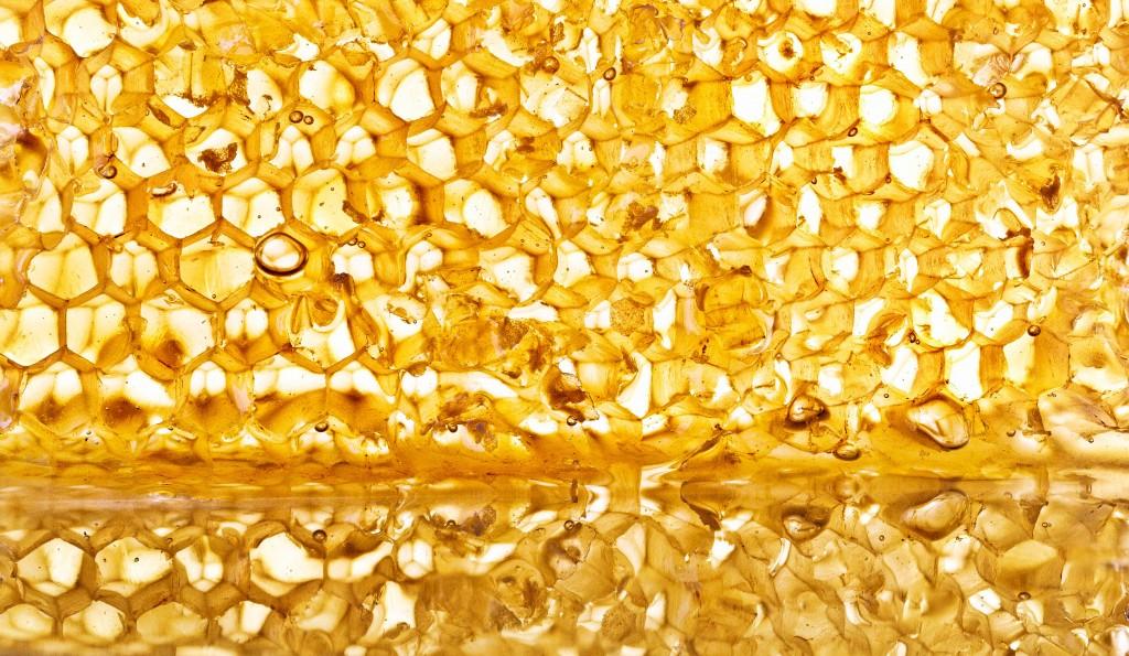 Honeycomb fine art food photography
