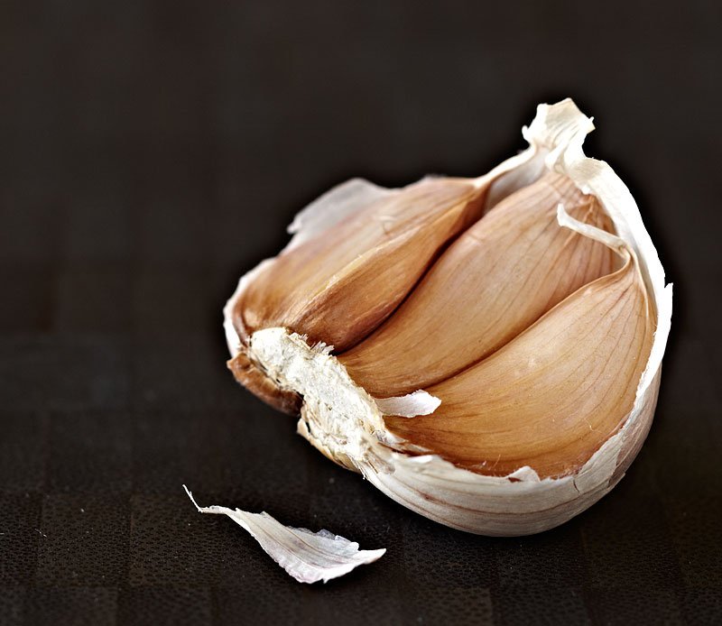 Head of Garlic