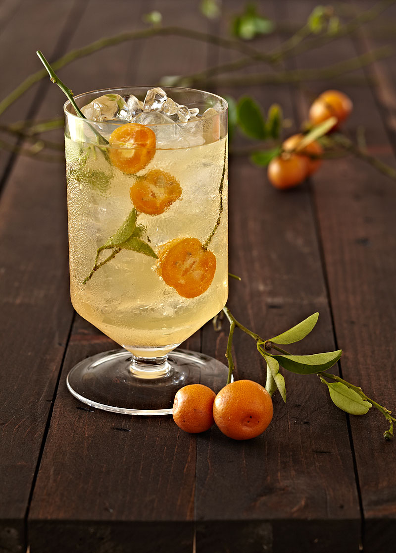 tangerine drink by food photographer Crystal Cartier